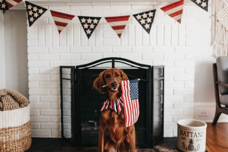 50 Patriotic 4th of July Decor Ideas