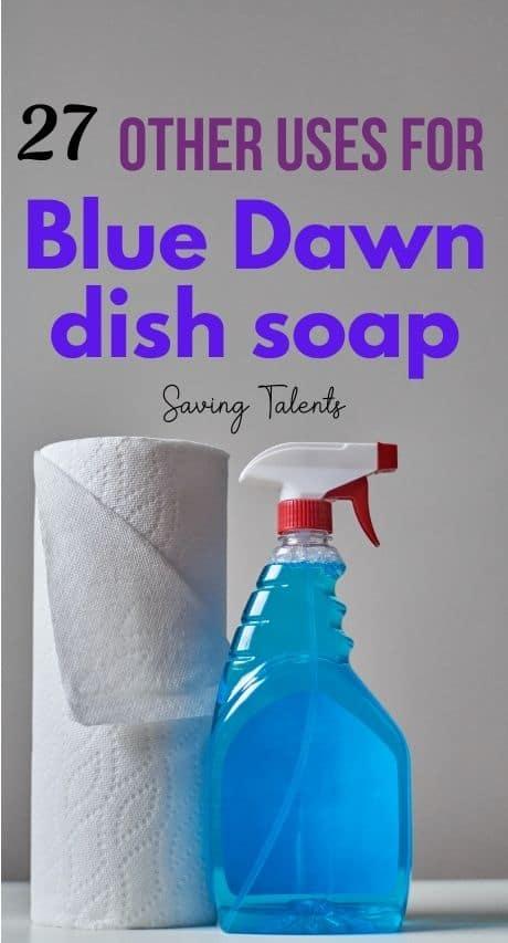 Blue Dawn Alternatives Story